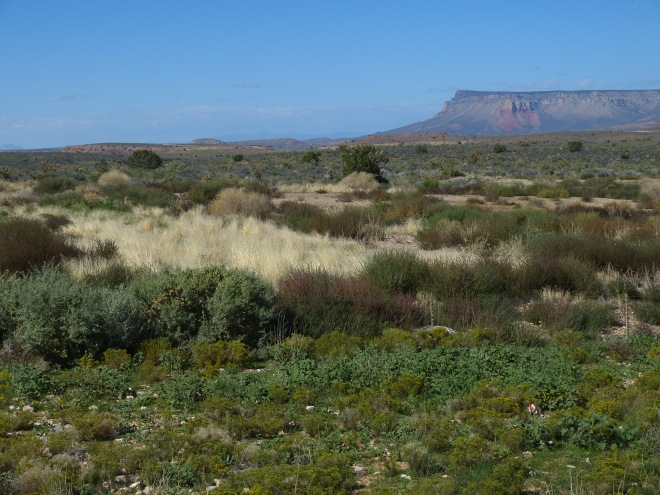 The flat Colorado Plateau gave no hint of what was close by